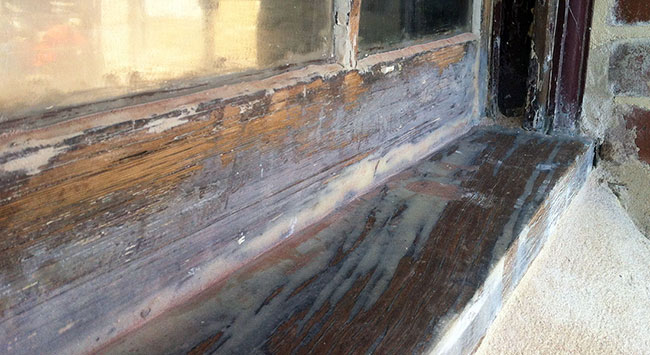 rotten-sash-window-23